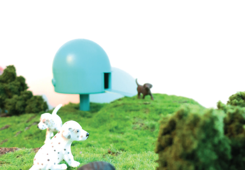 Dog Houses: The Astro 2 scale model.